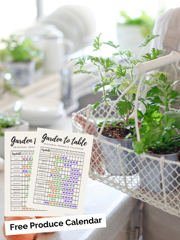 Seasonal Produce Calendar – free printable