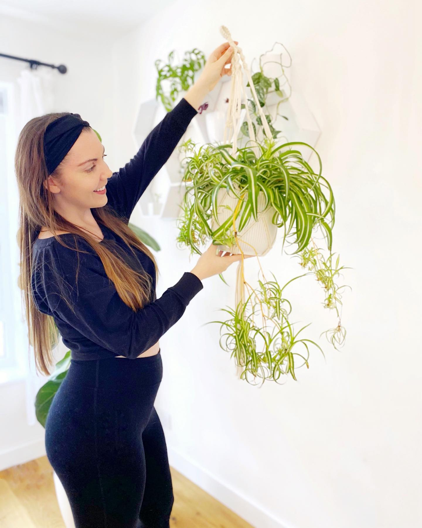 How To Keep Your Houseplants Happy and Healthy